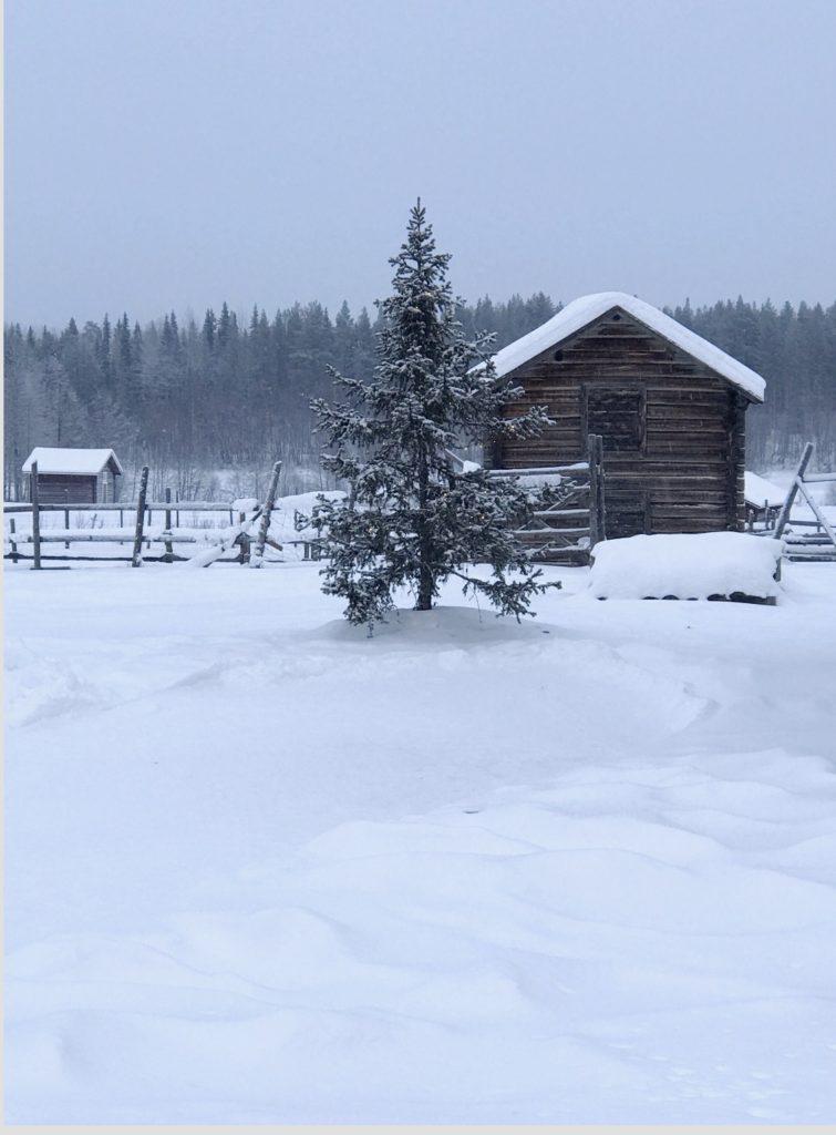 Levi, snow, Finland, ski, winter, lapland,